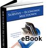 How to Survive the Economic Meltdown